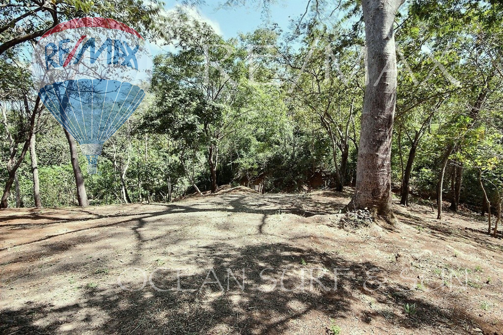 Finca Sybilla, Canafistula, Costa Rica