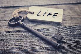 Image of a key with Life tag