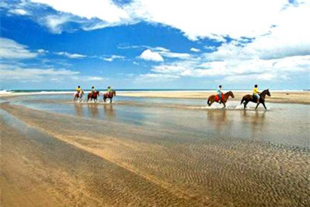 Riding horses on the beach of Playa Negra
