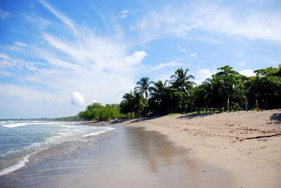 Information about playa negra costa rica negra beach for Black sand beaches costa rica