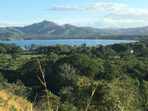 Flamingo ocean view lot